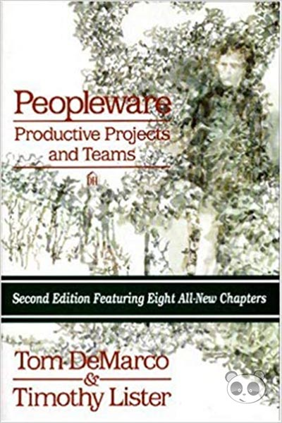 sách lập trình Peopleware Productive Projects and Teams